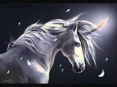 why don t we unicorns today this ballsy unicorn kelpie and pegasus taking me wmv