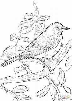 baltimore ravens drawing at getdrawings free