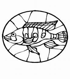 fische 00248 gratis malvorlage in fische tiere ausmalen
