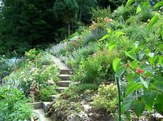 Steile Böschung Bepflanzen - bodendecker auf b 246 schung pflanzen seite 3 garten