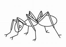 Insekten Malvorlagen Tiere Lustige Und Realistische Ausmalbilder Tieren