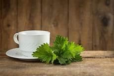 tipps und hausmittel gegen schnarchen besser gesund leben