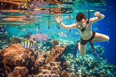 los cabos snorkeling snorkeling in cabo los cabos passport