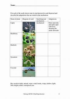 animal reproduction worksheets for grade 5 14018 plant reproduction worksheet