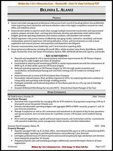 professional resume service project scope template
