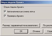 после подачи на носителя русского языка через сколько месяцев получается