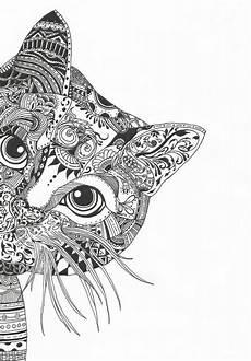 catsdiydrawing mandala drawing hummingbird artwork