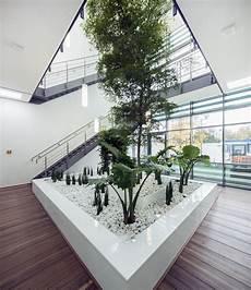 baum im raum indoorlandscaping big plants palms trees interior buy