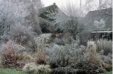 Gräser Im Winter - garten groene de garten gr 246 ne winter in der sonne de