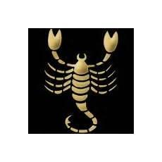 tageshoroskop skorpion single horoskop f 252 r heute morgen und 252 bermorgen ihr aktuelles