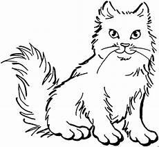 Katze Malvorlagen Gratis Plueschige Katze Ausmalbild Malvorlage Tiere