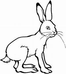 Ausmalbild Hase Einfach Malvorlagen Hasen Gratis Coloring And Malvorlagan