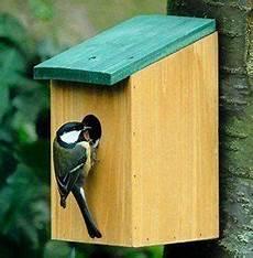 fabriquer un nichoir pour oiseaux maison oiseaux a fabriquer maison nichoir en bois perchoir mangeoire a oiseau moineau ou