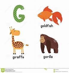 animal en g 30218 alfabeto lindo parque zool 243 gico en vector letra de g animales divertidos de la historieta