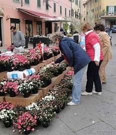 fiori vendita fioristi pi 249 tutelati con la legge regionale la rassegna