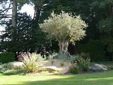 jardin en ligne piscine et jardins tremblais cr 233 ateur bressuire 79
