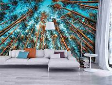trompe l oeil salon trompe l oeil wallpaper introduce nature into your home