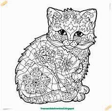 ausmalbilder katzen fur erwachsene