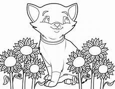 Malvorlagen Sonnenblumen Ausdrucken Sonnenblume Malvorlage Aausmalbilder Club