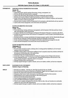 sales marketing manager resume sles velvet