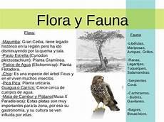 flora y fauna del municipio alberto adriani presentaci 243 n municipio alberto adriani