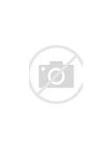 фмс россии проверка паспорта запрет для граждан узбекистана 2020