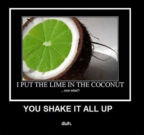 coconut pictures  jokes funny pictures  jokes
