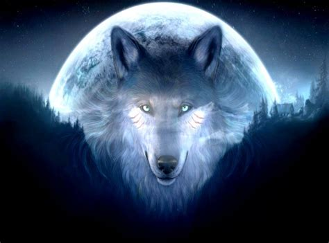 Amazing 3d Animated Wallpapers Hd - 3d wolf wallpaper hd amazing wallpapers