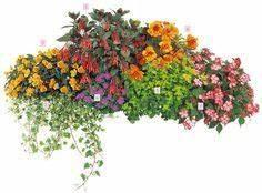 Blumenkästen Bepflanzen Sonnig : balkon ideen balkonk sten bepflanzen dreimal anders strandcocktail mit pflanzen in rot ~ Orissabook.com Haus und Dekorationen