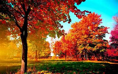Fall Desktop Themed Screensavers Autumn Wallpapers Cave