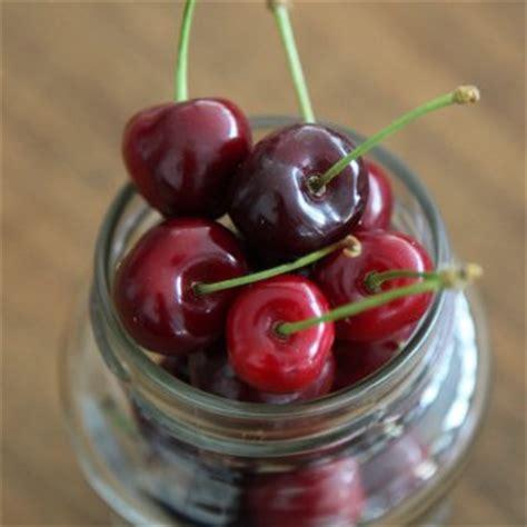 recette bocal de cerises 224 l eau de vie cuisine et vins