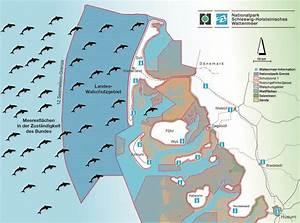 Seemeilen Berechnen Karte : nordsee sylt naturreporter ~ Themetempest.com Abrechnung