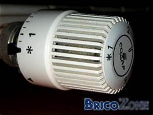 Vanne Thermostatique Pour Radiateur Fonte : robinet radiateur ancien robinet radiateur fonte style ~ Premium-room.com Idées de Décoration
