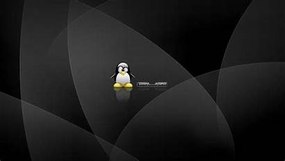 Linux Wallpapers Computers