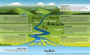 Diagram Of A River