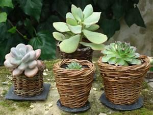 Cache Pot Tressé : boutique cache pots pots tisane suspensions produits naturels ~ Teatrodelosmanantiales.com Idées de Décoration