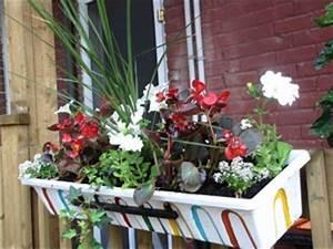 romarin jardinieres tout With idee pour amenager son jardin 12 comment avoir un balcon fleuri idees en 50 photos