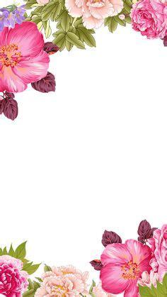 flower frame images   flower frame frame