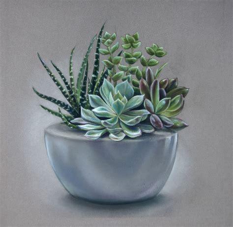 Succulents Pastel Drawing By Tatjana Bril Artfinder