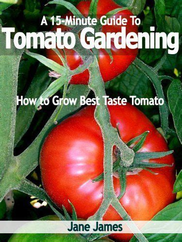 minute guide  tomato gardening   grow