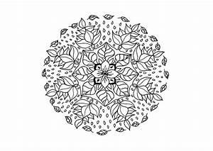 Fiori da colorare: disegni da stampare a tema fiori, per grandi e piccini