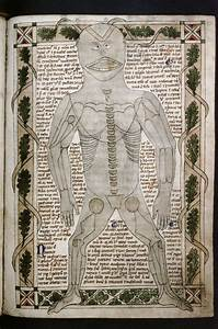 Bodleian  Ms  Ashmole 399  F 020r  Treatise On The Human