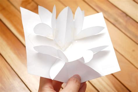 How To Make A Poinsettia Pop Up Card (robert Sabuda Method