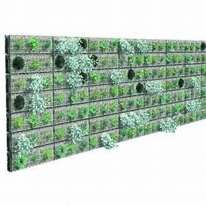 Mur Végétal Anti Bruit : mur v g talis pour doublage de fa ade v g talis greenwall ~ Premium-room.com Idées de Décoration