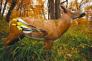 Bowhunting Practice Tips - North American Whitetail