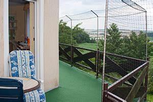 katzenwohnung artgerechte haltung von katzen With französischer balkon mit garten günstig katzensicher machen