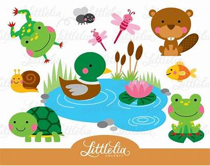 Pond Clipart Animals Frog Turtle Friend Animal