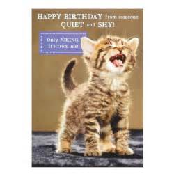 cat cards birthday card birthday cards with cats cat birthday