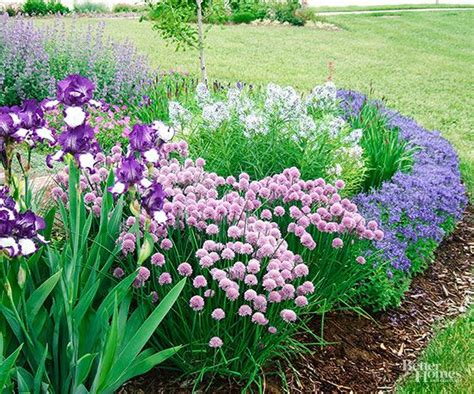 25 best ideas about purple garden on purple