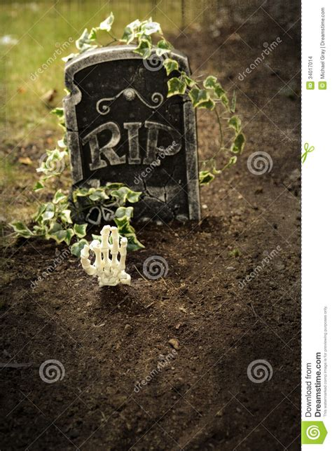 skeleton hand coming   grave stock photo image